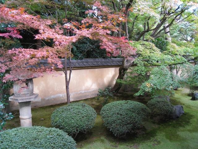 Jardin temple Kyoto