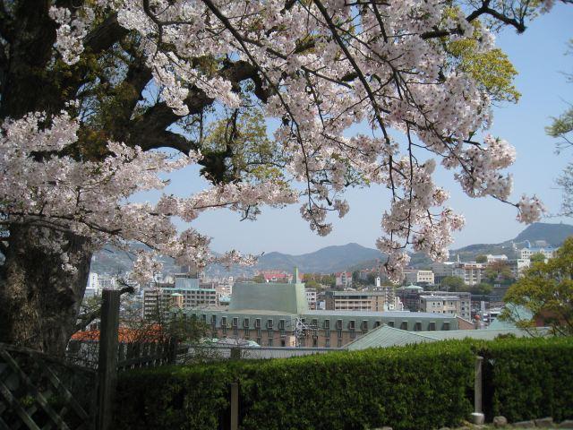 Cherry Blossom asiatique datant matchmaking serveur sélecteur pl